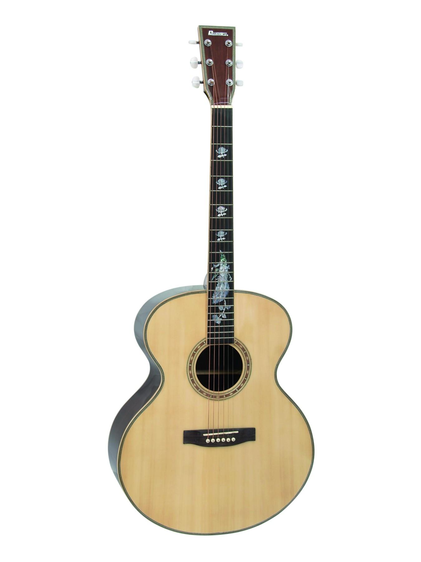 Staalsnarige gitaar
